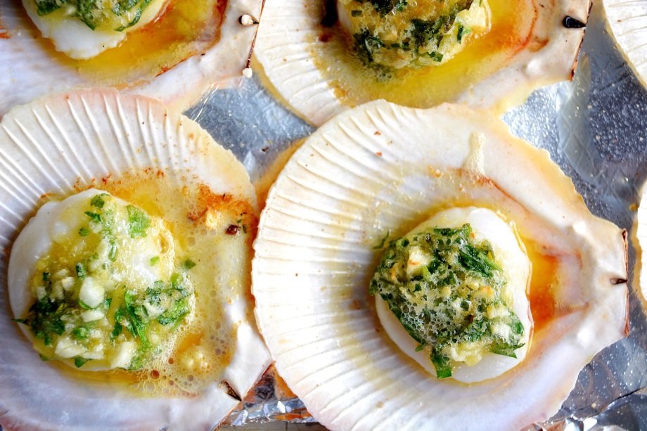scallops on the shell - italy on my mind